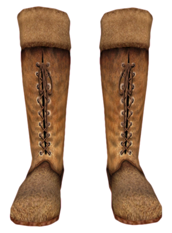 File:Pit Boots Female.png