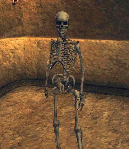 File:Skeleton Archer (Morrowind).jpg