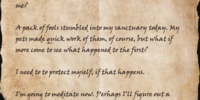 Nolonir's Journal, Page 29