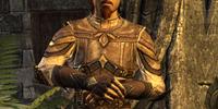 Vicereeve Pelidil