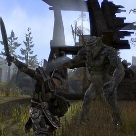 Nord Fighting a Troll
