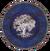 Chorrol Shield