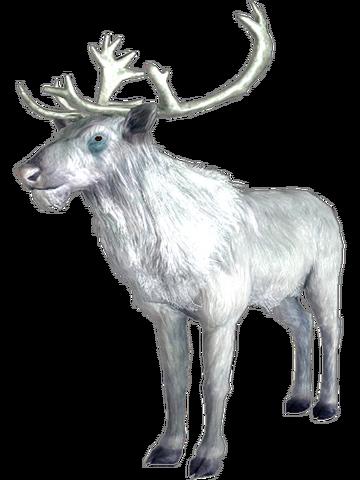 File:Prince of hunt.png