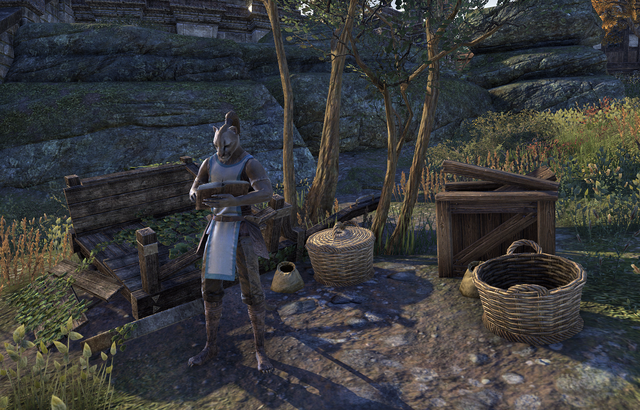 File:Guild Store (The Market).png