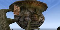 Galen Berer: Armorer