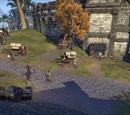 Guild Traders (Wayrest)