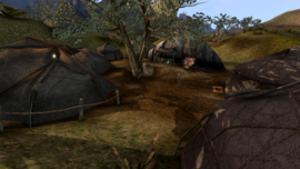 Zainab Camp - Morrowind