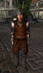 TESIV Guard Anvil 1.png