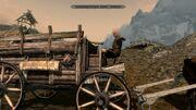 Bjorlam cart bug2