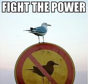 FightThePower