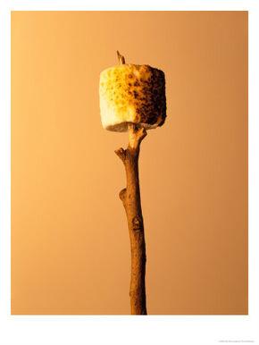 Deck11-marshmallow