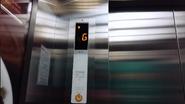 Sigma Car Floor Indicator TH