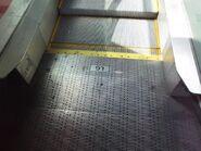 LG escalator plate