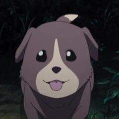 The puppy in the anime.