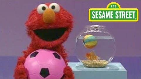 Sesame Street- Elmo's World- Play Ball!