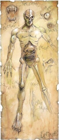 File:Undead Physiology.jpg