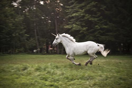 File:Unicorn - Full Speed.jpg