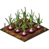 Crop Red Onion Grown SW Icon