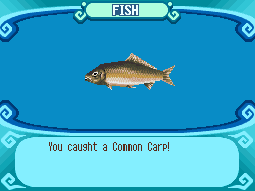 File:Common Carp.PNG