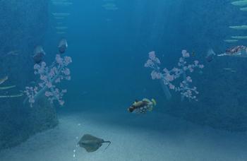 Mermaid Tunnel