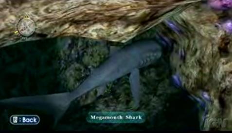 File:Megamouth.png