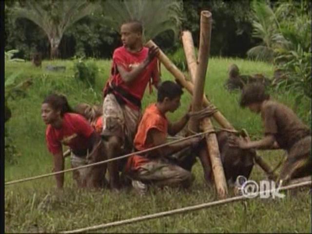 File:312 - Bamboo Jungle (060).png