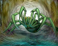 File:Wisdom of the spider.jpg
