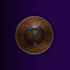 File:Small leather shield.jpg