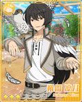 (Falcon) Ritsu Sakuma Bloomed