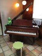 Kermit on a piano