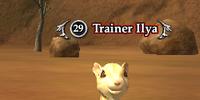 Trainer Ilya