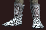 Feral Rainkeeper's Leather Boots (Equipped)