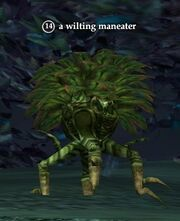 A wilting maneater