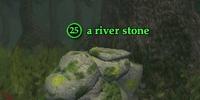 A river stone