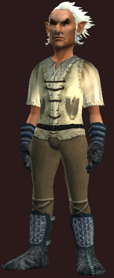 Male tradesman (Armor Set) (Visible, Male)