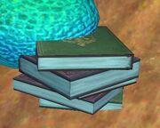 An adventurer's journal (Visible)