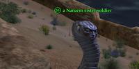 A Naruem sister soldier