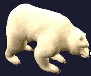 An erollisi teddy bear (Visible)