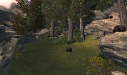 Hawkeye Trails