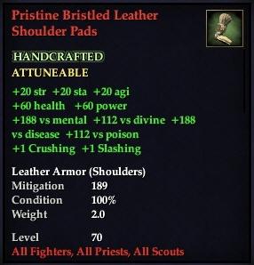 File:Pristine Bristled Leather Shoulder Pads.jpg