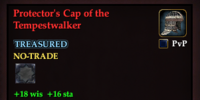 Protector's Cap of the Tempestwalker