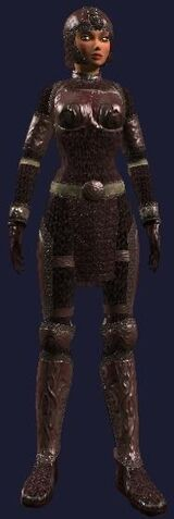 File:Harmonious Blood Mail (Armor Set) (Visible, Female).jpg