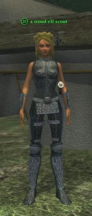 A wood elf scout