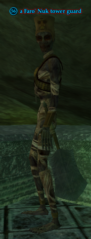 A Faro' Nuk tower guard