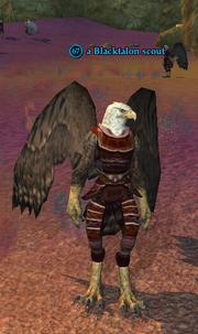 A Blacktalon scout