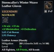 Stormcaller's Winter Weave Leather Gloves