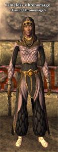 Guild-chronomage-hireling
