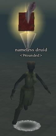 Nameless druid (Fens of Nathsar)