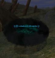 A shadowed rift watcher (Enchanted Lands)