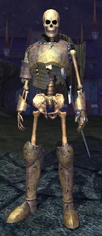 Undead Knight V (Apprentice)